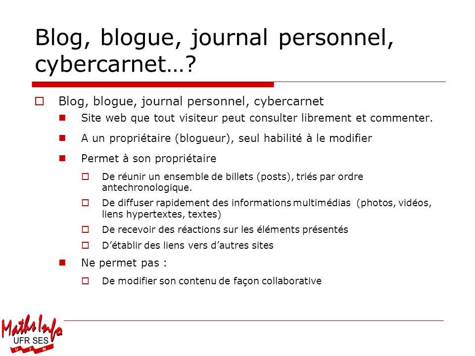 Blog, blogue, journal personnel, cybercarnet…? Blog, blogue, journal personnel, cybercarnet Site web que tout visiteur peut consulter librement et com