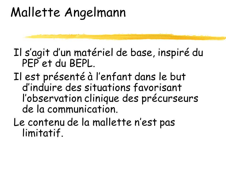 Mallette Angelmann Il sagit dun matériel de base, inspiré du PEP et du BEPL.