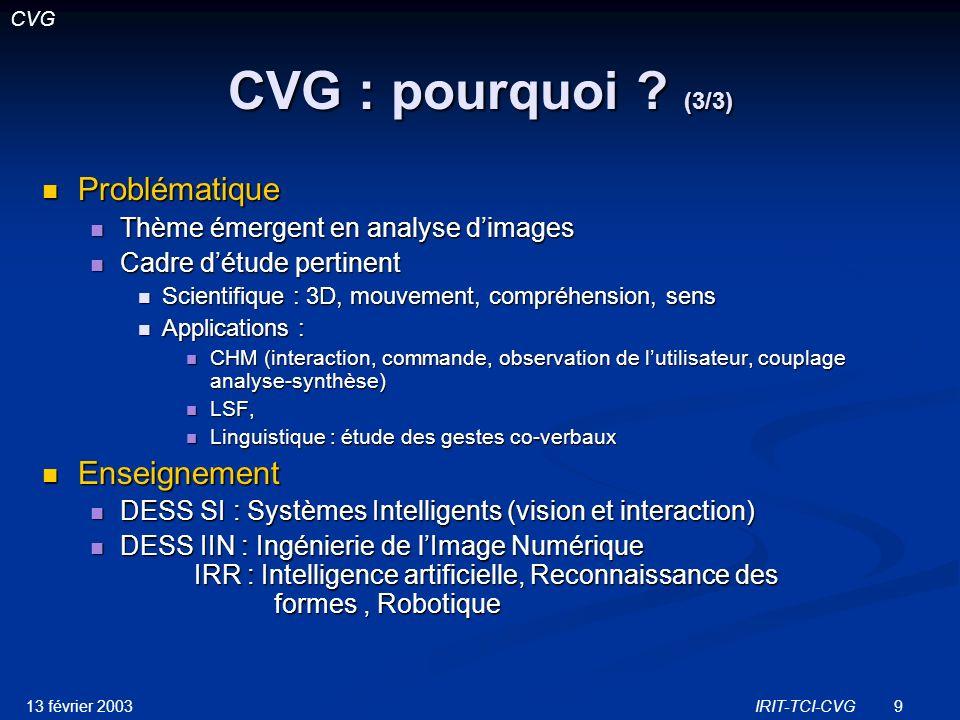 13 février 2003IRIT-TCI-CVG40 Estimation 3D de la posture Point 3D = droite de projection sphère Analyse dimage IRIT-TCI