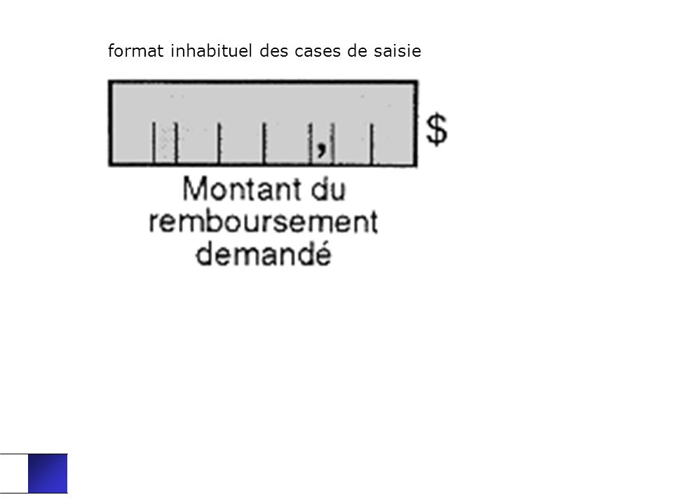 format inhabituel des cases de saisie