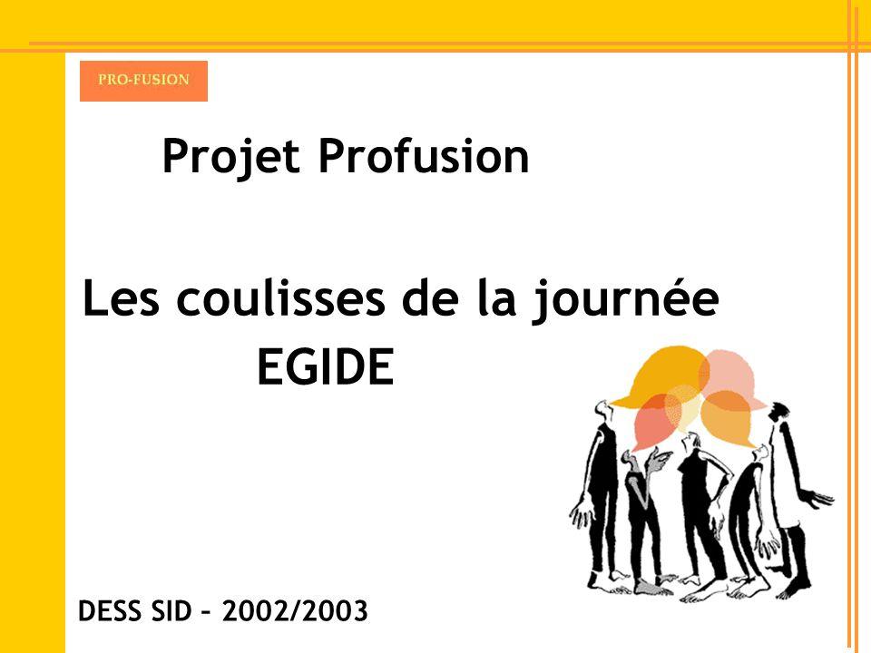 Projet Profusion Les coulisses de la journée EGIDE DESS SID – 2002/2003