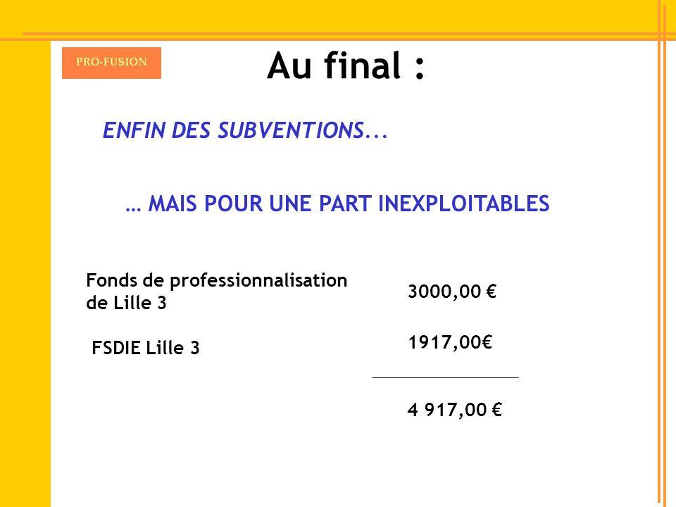 ENFIN DES SUBVENTIONS... FSDIE Lille 3 Fonds de professionnalisation de Lille 3 3000,00 1917,00 4 917,00 … MAIS POUR UNE PART INEXPLOITABLES Au final