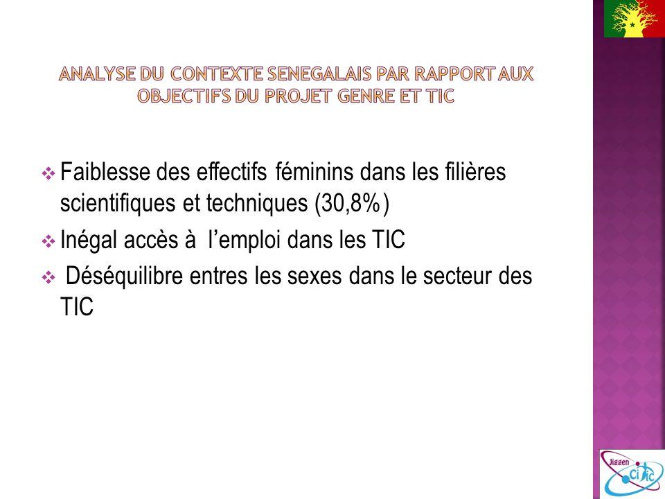 Faiblesse des effectifs féminins dans les filières scientifiques et techniques (30,8%) Inégal accès à lemploi dans les TIC Déséquilibre entres les sexes dans le secteur des TIC