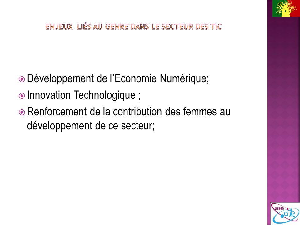 Développement de lEconomie Numérique; Innovation Technologique ; Renforcement de la contribution des femmes au développement de ce secteur;