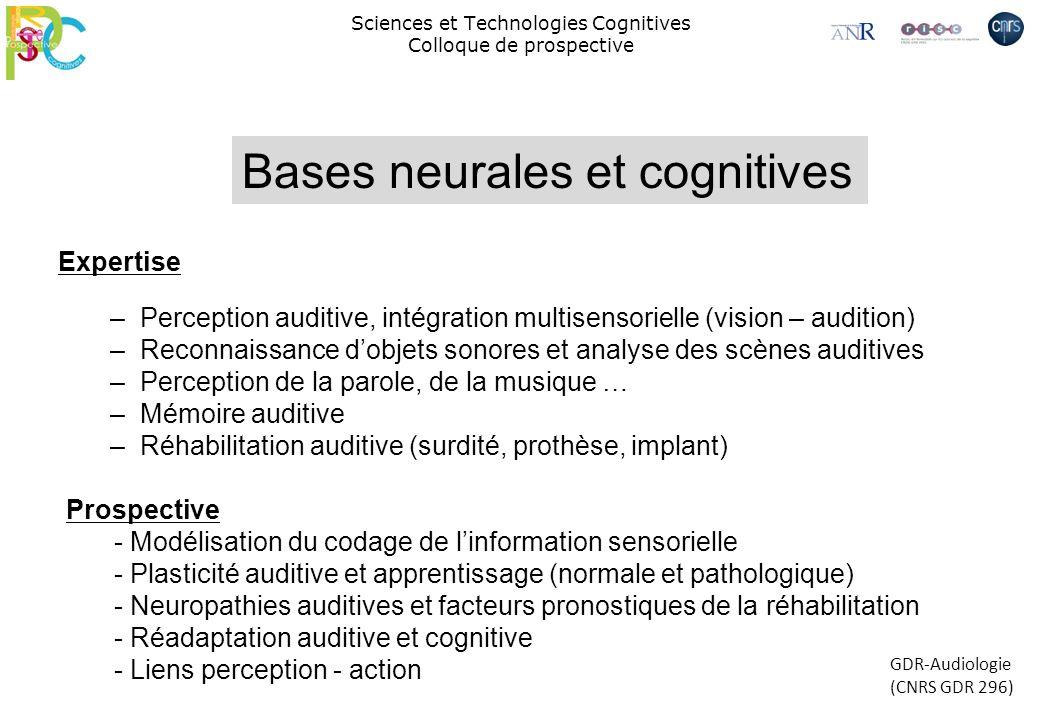 Sciences et Technologies Cognitives Colloque de prospective Prospective - Modélisation du codage de linformation sensorielle - Plasticité auditive et