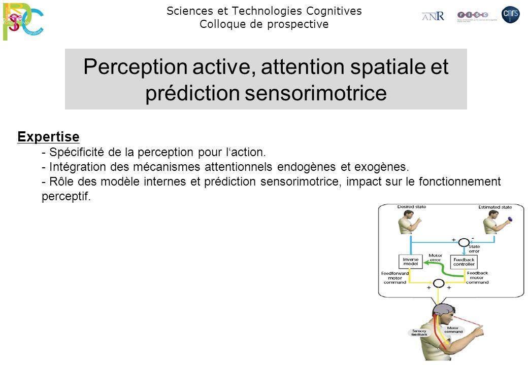 Sciences et Technologies Cognitives Colloque de prospective Perception active, attention spatiale et prédiction sensorimotrice Expertise - Spécificité