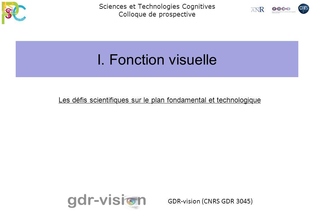 Sciences et Technologies Cognitives Colloque de prospective GDR-vision (CNRS GDR 3045) Les défis scientifiques sur le plan fondamental et technologiqu