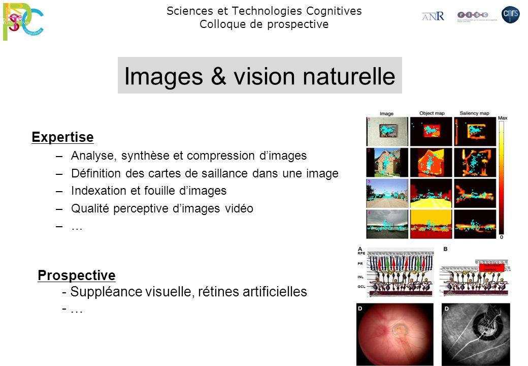 Sciences et Technologies Cognitives Colloque de prospective Expertise –Analyse, synthèse et compression dimages –Définition des cartes de saillance da