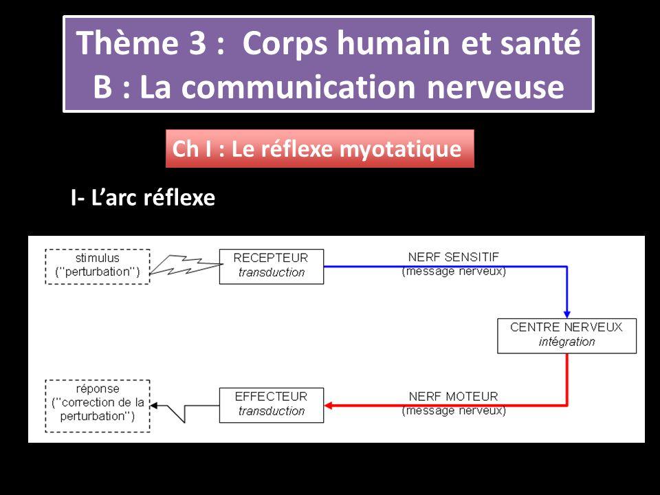 Thème 3 : Corps humain et santé B : La communication nerveuse Ch I : Le réflexe myotatique I- Larc réflexe
