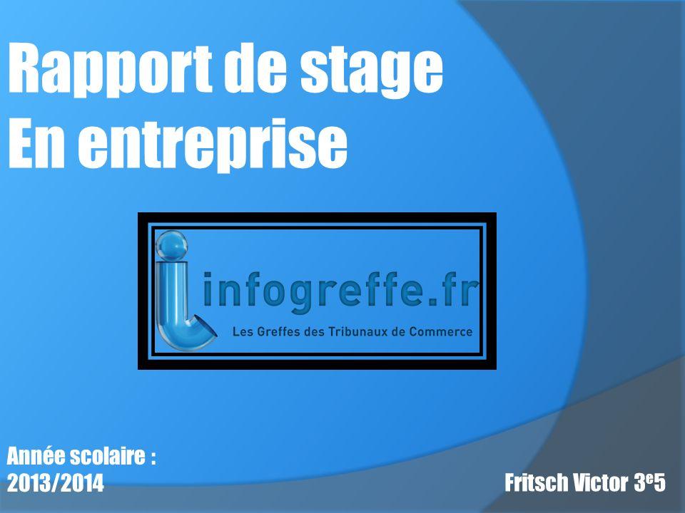 Rapport de stage En entreprise Année scolaire : 2013/2014 Fritsch Victor 3 e 5