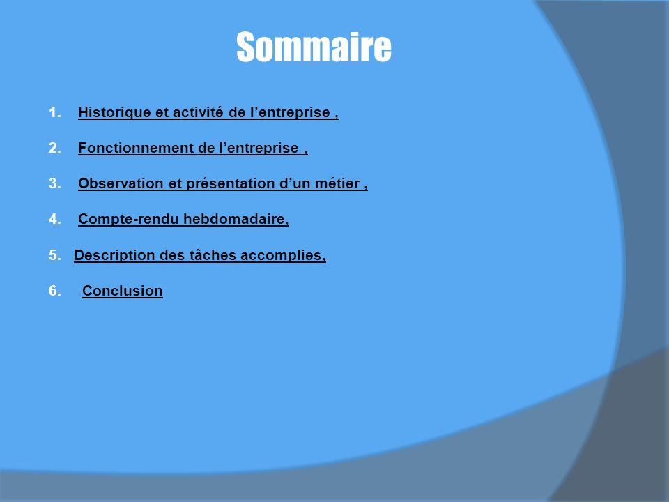 Sommaire 1.Historique et activité de lentreprise,Historique et activité de lentreprise, 2.