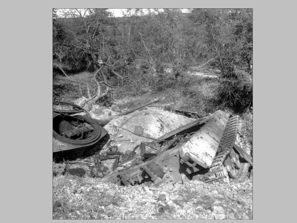 CHAR ALLEMAND DETRUIT VOSGES 1944