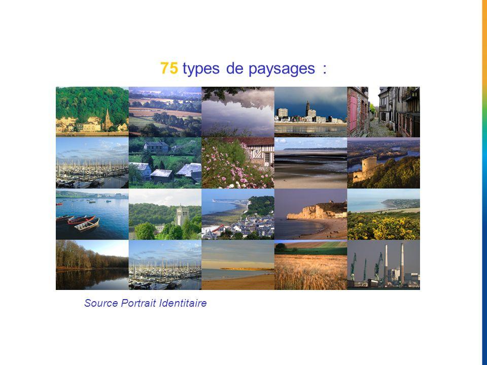 75 types de paysages : Vos clients témoignent sur Internet… Source Portrait Identitaire