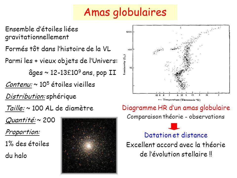 Ensemble détoiles liées gravitationnellement Formés tôt dans lhistoire de la VL Parmi les + vieux objets de lUnivers: âges ~ 12-13 £ 10 9 ans, pop II Contenu: ~ 10 5 étoiles vieilles Distribution: sphérique Taille: ~ 100 AL de diamètre Quantité: ~ 200 Proportion: 1% des étoiles du halo Amas globulaires Diagramme HR dun amas globulaire Comparaison théorie - observations Datation et distance Excellent accord avec la théorie de lévolution stellaire !!