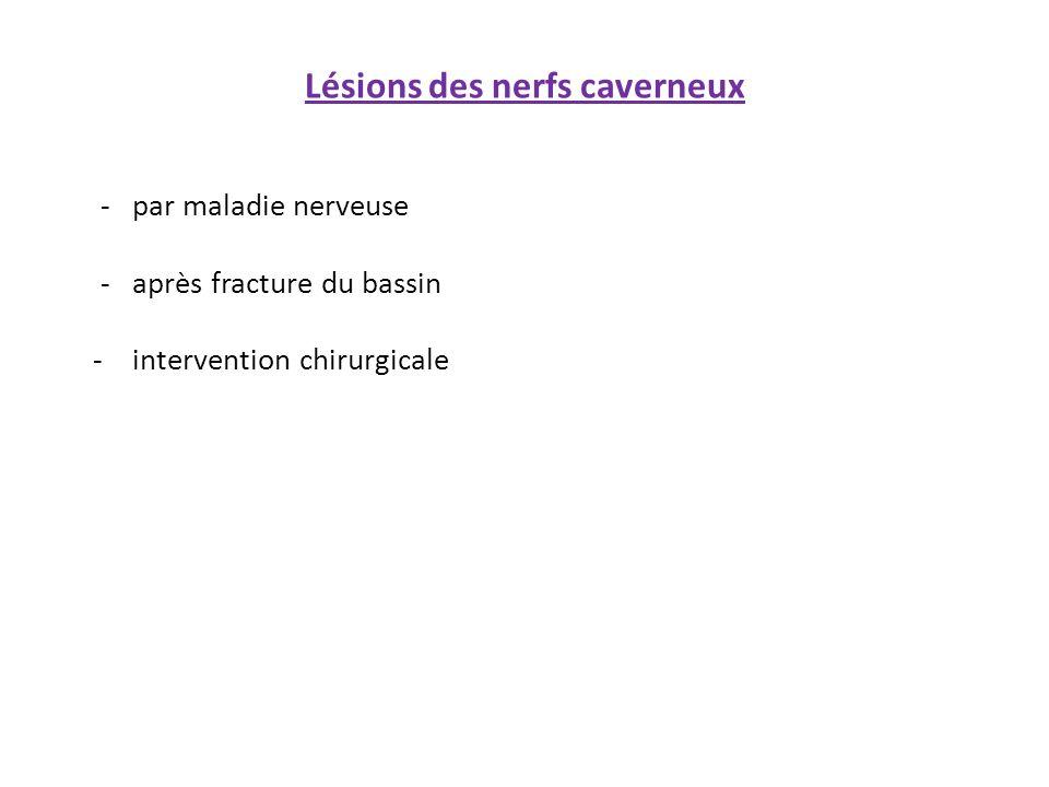 - par maladie nerveuse - après fracture du bassin - intervention chirurgicale Lésions des nerfs caverneux