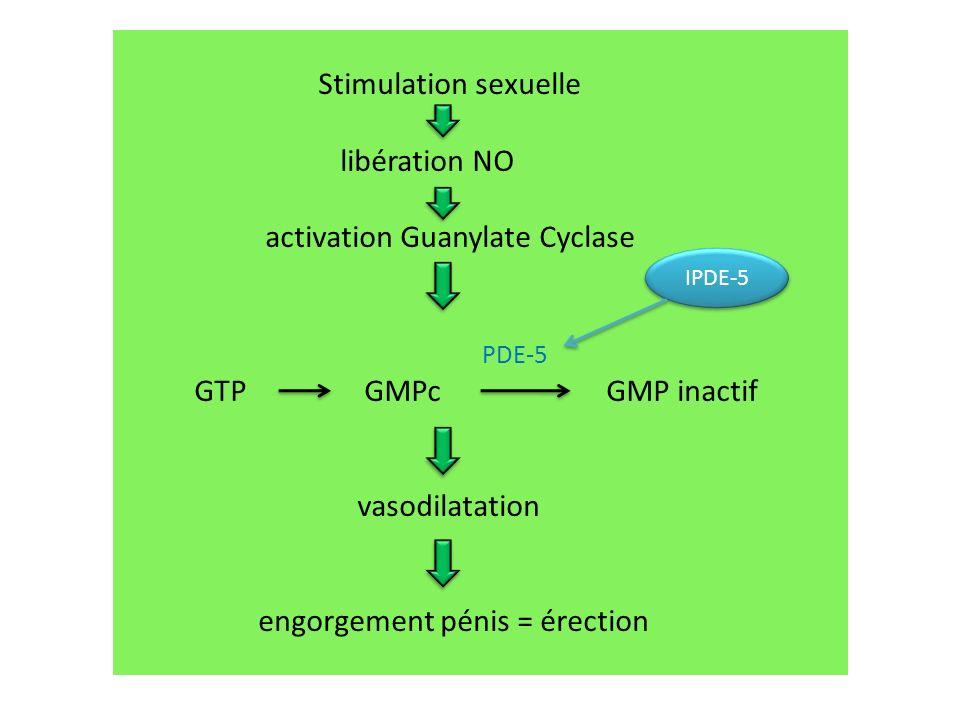 Stimulation sexuelle libération NO activation Guanylate Cyclase PDE-5 GTP GMPc GMP inactif vasodilatation engorgement pénis = érection IPDE-5