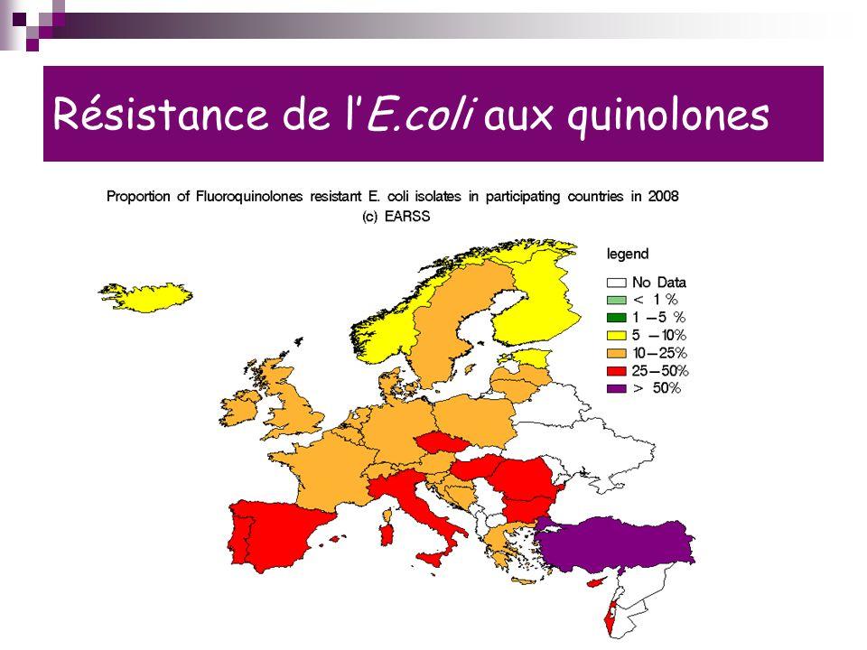 Résistance de lE.coli aux quinolones