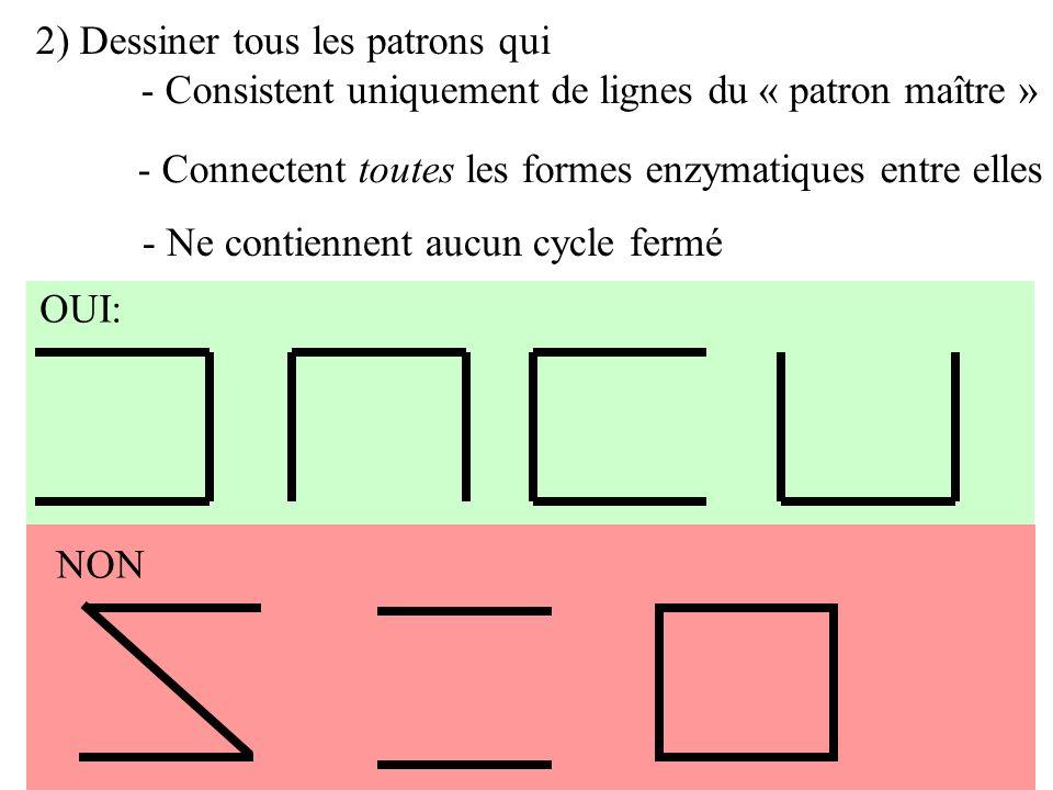 2) Dessiner tous les patrons qui - Consistent uniquement de lignes du « patron maître » OUI: NON - Connectent toutes les formes enzymatiques entre ell