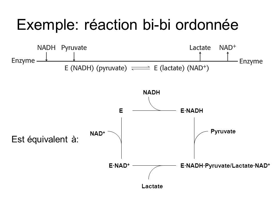 Pyruvate EENADH ENADHPyruvate/LactateNAD + ENAD + NADH Lactate NAD + Est équivalent à: Exemple: réaction bi-bi ordonnée