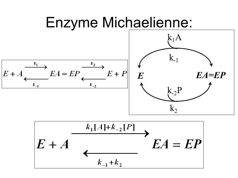 k1Ak1A k -1 k -2 P k2k2 E EA=EP Enzyme Michaelienne: