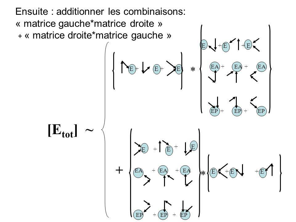 Ensuite : additionner les combinaisons: « matrice gauche*matrice droite » + « matrice droite*matrice gauche » E + E E+ E EA +EA + E EA + EP +EPEP + *