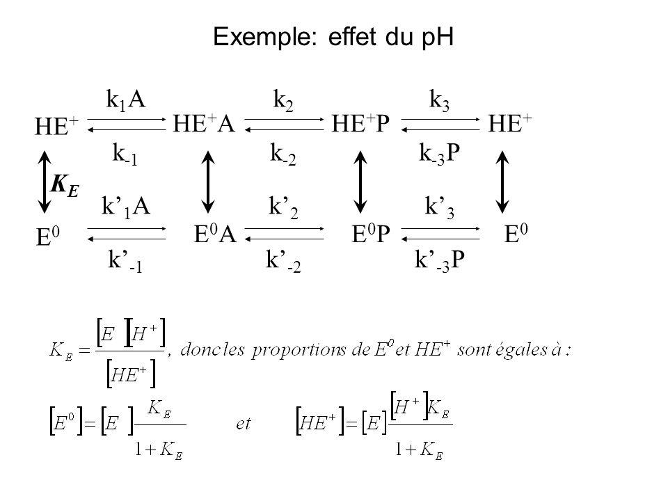 Exemple: effet du pH HE + HE + PHE + A E0E0 E0E0 E0PE0PE0AE0A k2k2 k1Ak1A k -1 k -3 Pk -2 k -1 k3k3 KEKE k1Ak1A k2k2 k -2 k -3 P k3k3