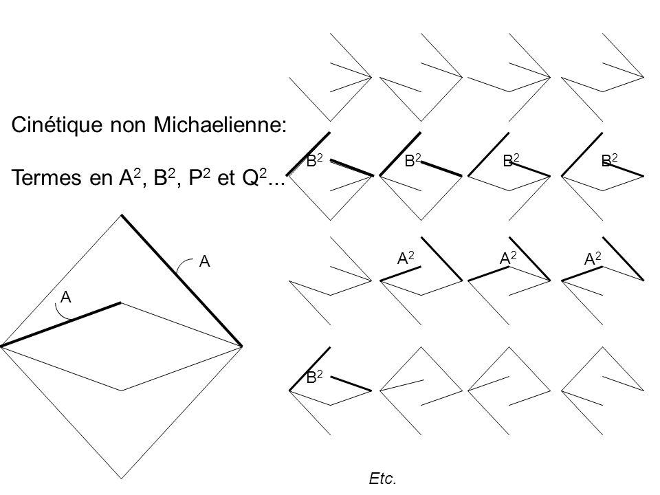 Etc. A A B2B2 A2A2 B2B2 B2B2 B2B2 A2A2 B2B2 Cinétique non Michaelienne: Termes en A 2, B 2, P 2 et Q 2... A2A2