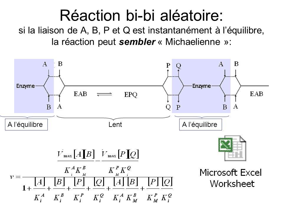 Réaction bi-bi aléatoire: si la liaison de A, B, P et Q est instantanément à léquilibre, la réaction peut sembler « Michaelienne »: A léquilibre Lent