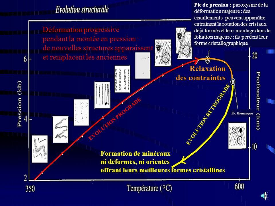 Déformation progressive pendant la montée en pression : de nouvelles structures apparaissent et remplacent les anciennes Relaxation des contraintes Fo