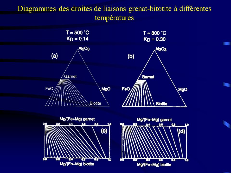 Diagrammes des droites de liaisons grenat-bitotite à différentes températures