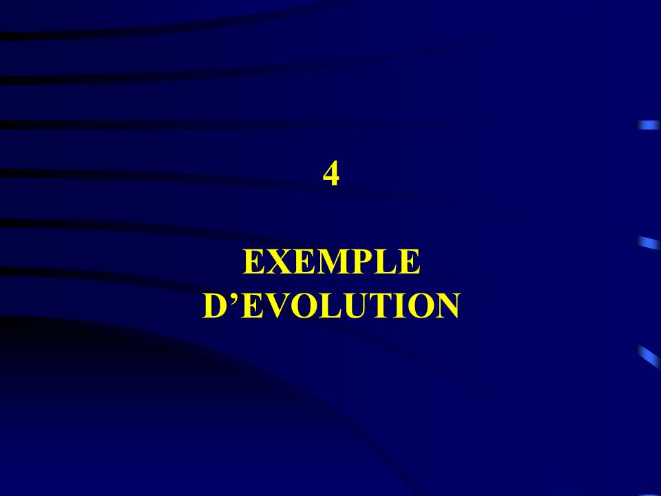 4 EXEMPLE DEVOLUTION