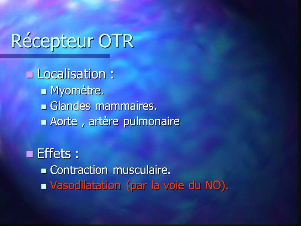 Récepteur OTR Localisation : Localisation : Myomètre.