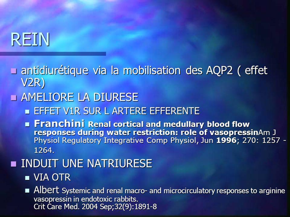 REIN antidiurétique via la mobilisation des AQP2 ( effet V2R) antidiurétique via la mobilisation des AQP2 ( effet V2R) AMELIORE LA DIURESE AMELIORE LA DIURESE EFFET V1R SUR L ARTERE EFFERENTE EFFET V1R SUR L ARTERE EFFERENTE Franchini Renal cortical and medullary blood flow responses during water restriction: role of vasopressinAm J Physiol Regulatory Integrative Comp Physiol, Jun 1996; 270: 1257 - 1264.