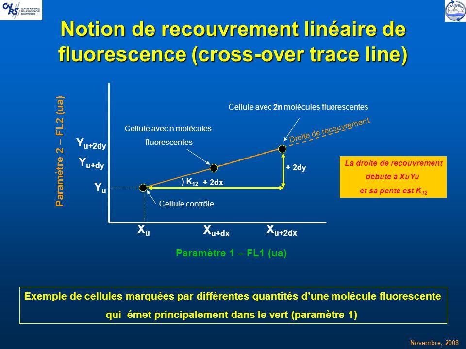 Novembre, 2008 Notion de recouvrement linéaire de fluorescence (cross-over trace line) XuXu YuYu X u+dx Y u+dy + 2dx + 2dy Exemple de cellules marquée