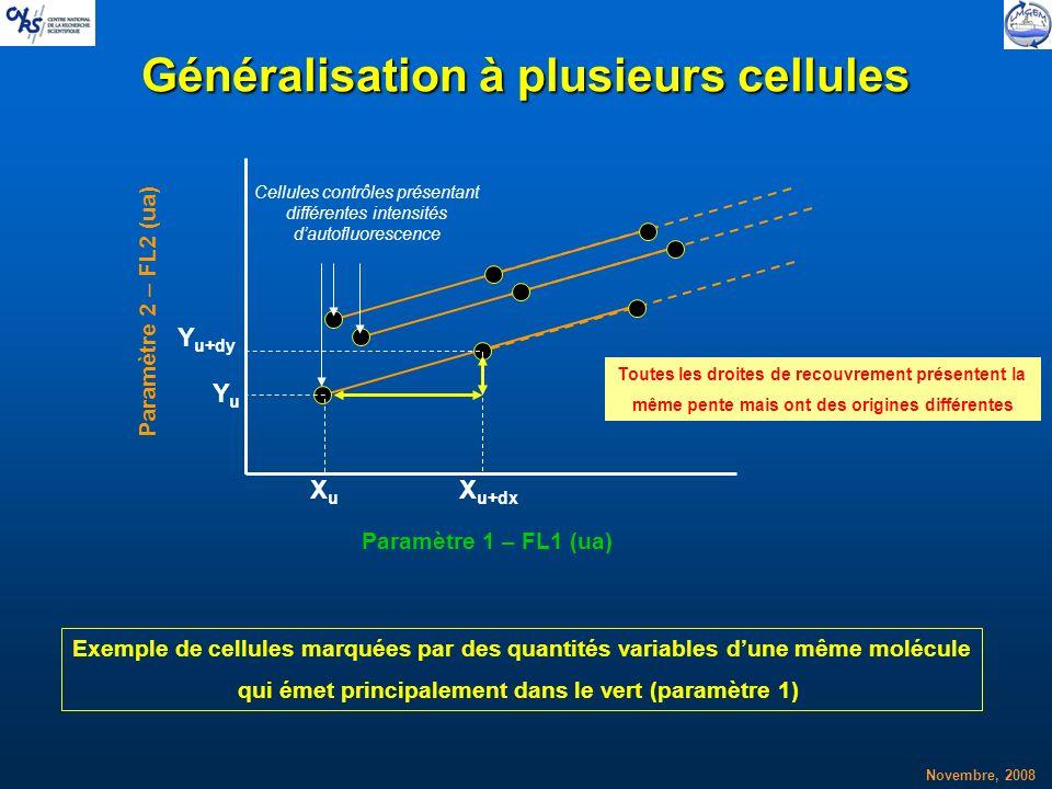 Novembre, 2008 Généralisation à plusieurs cellules XuXu YuYu X u+dx Y u+dy Exemple de cellules marquées par des quantités variables dune même molécule