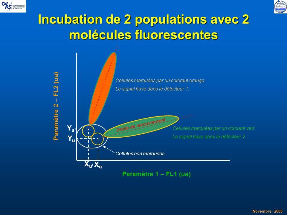 Novembre, 2008 Incubation de 2 populations avec 2 molécules fluorescentes XuXu YuYu Droite de recouvrement Cellules marquées par un colorant orange. L