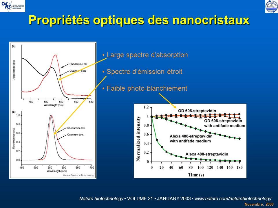Novembre, 2008 Propriétés optiques des nanocristaux Nature biotechnology VOLUME 21 JANUARY 2003 www.nature.com/naturebiotechnology Large spectre dabso