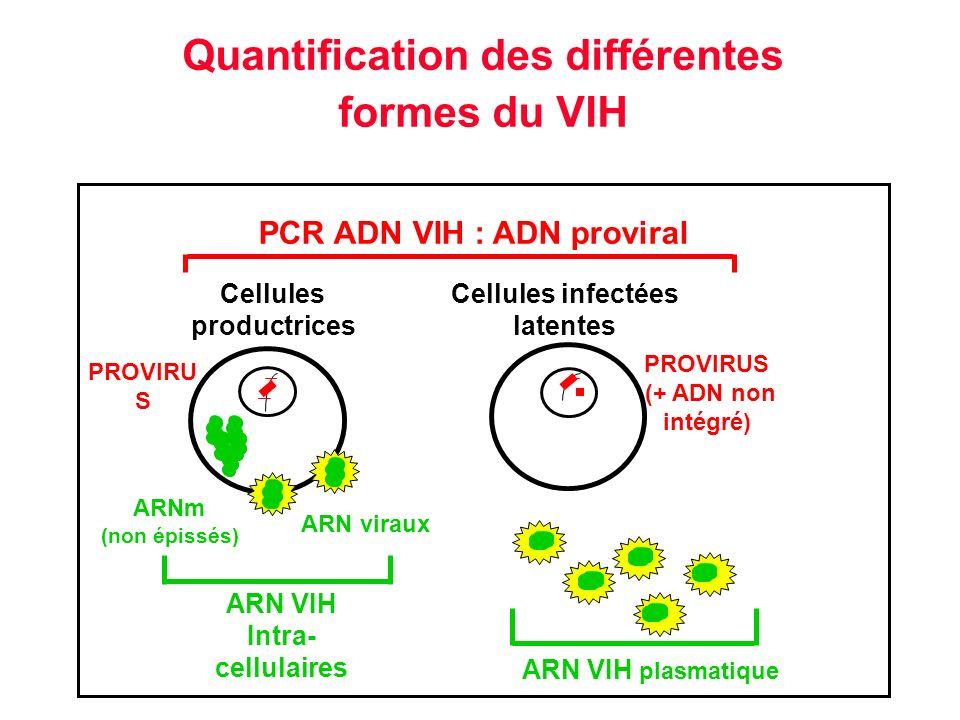 Quantification des différentes formes du VIH Cellules productrices Cellules infectées latentes ARN viraux PCR ADN VIH : ADN proviral PROVIRU S (+ ADN