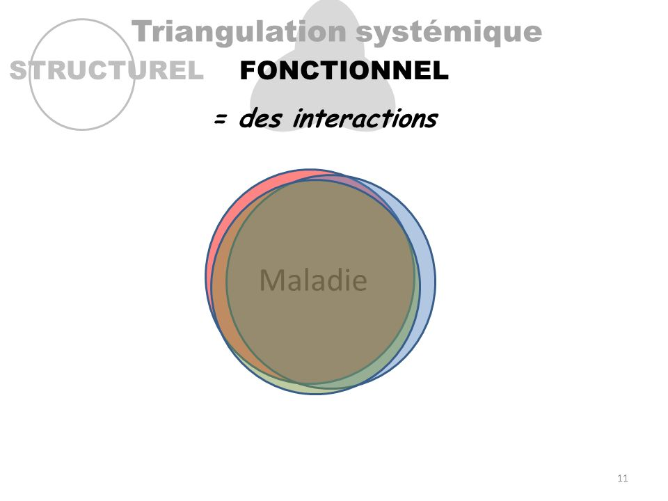 Triangulation systémique STRUCTURELFONCTIONNEL Maladie = des interactions 11