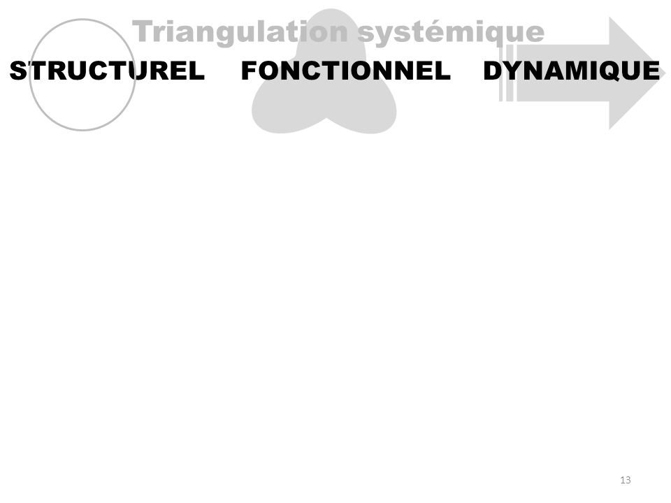 Triangulation systémique STRUCTURELFONCTIONNELDYNAMIQUE 13