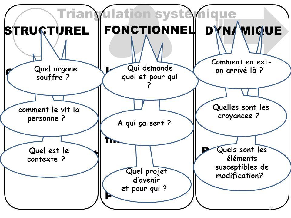 Triangulation systémique DYNAMIQUE Historique Prospectif FONCTIONNEL STRUCTUREL Interactions relationnelles Fonctions et finalités Objectif et projets