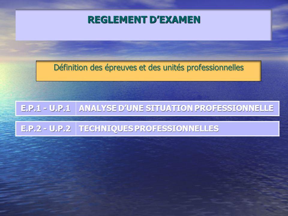 Définition des épreuves et des unités professionnelles E.P.1 - U.P.1 ANALYSE DUNE SITUATION PROFESSIONNELLE E.P.2 - U.P.2 TECHNIQUES PROFESSIONNELLES