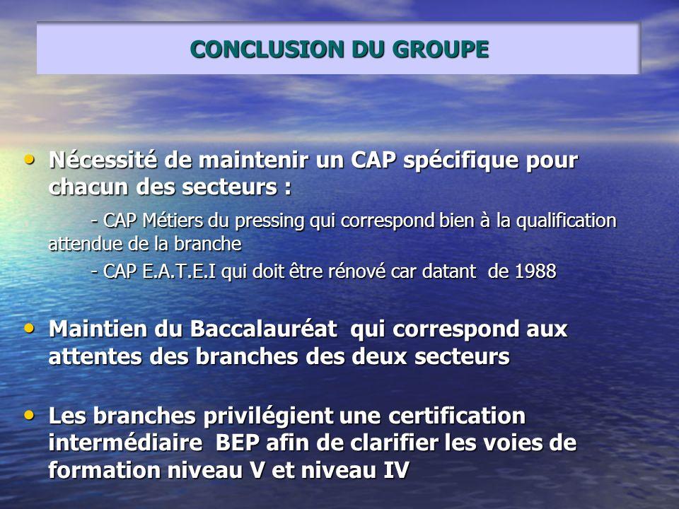 Nécessité de maintenir un CAP spécifique pour chacun des secteurs : Nécessité de maintenir un CAP spécifique pour chacun des secteurs : - CAP Métiers