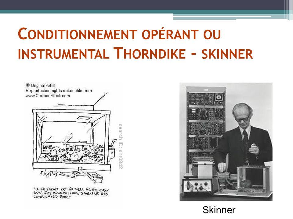 C ONDITIONNEMENT OPÉRANT OU INSTRUMENTAL T HORNDIKE - SKINNER Skinner