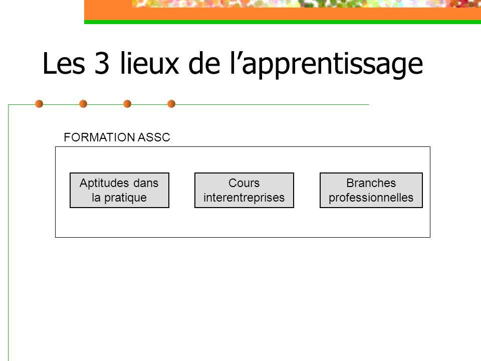Les 3 lieux de lapprentissage Aptitudes dans la pratique Cours interentreprises Branches professionnelles FORMATION ASSC