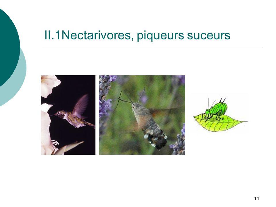 11 II.1Nectarivores, piqueurs suceurs