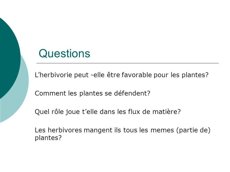 Questions Lherbivorie peut -elle être favorable pour les plantes? Comment les plantes se défendent? Quel rôle joue telle dans les flux de matière? Les