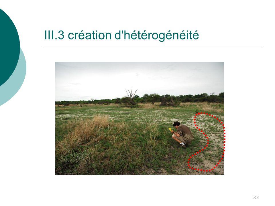 33 III.3 création d'hétérogénéité