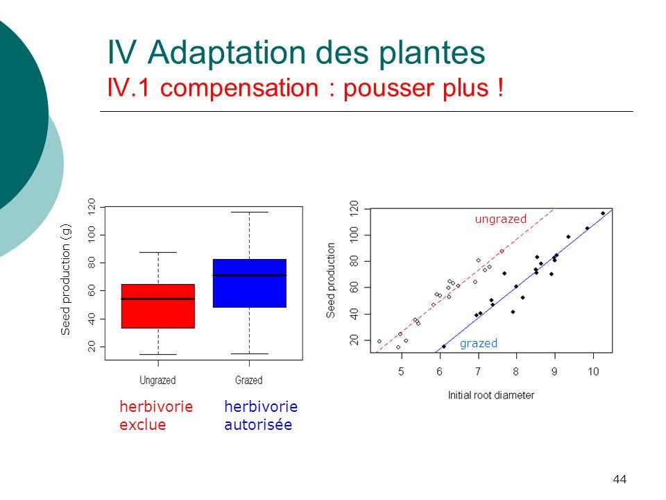 44 Seed production (g) grazed ungrazed herbivorie exclue herbivorie autorisée IV Adaptation des plantes IV.1 compensation : pousser plus !