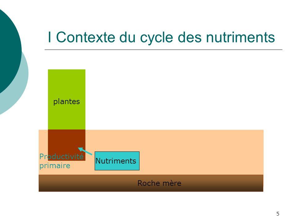 5 plantes Roche mère Nutriments Productivité primaire